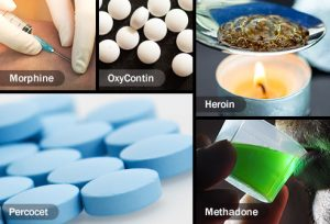 vicodin laws in maryland
